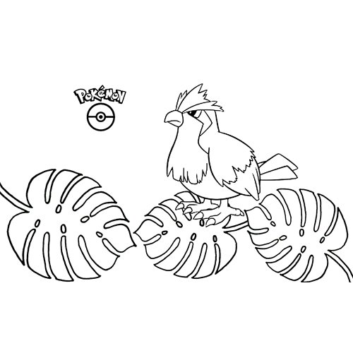 kawaii pokemon pidgey para colorear